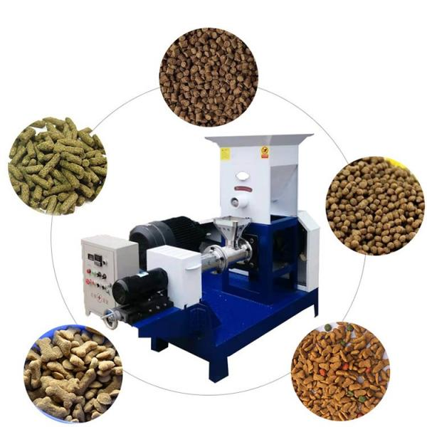 Floating Fish Feed Pet Food Extruder Production Line