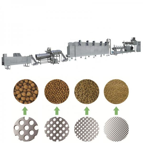 Steam or Dry Type Floating Fish Feed Extruder Machine in Nigeria
