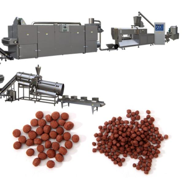 Floating Fish Food Processing Line / Catfish Feed Pellet Making Extruder Machine Corn Snack Double Screw Pellet Extruder Plant Price
